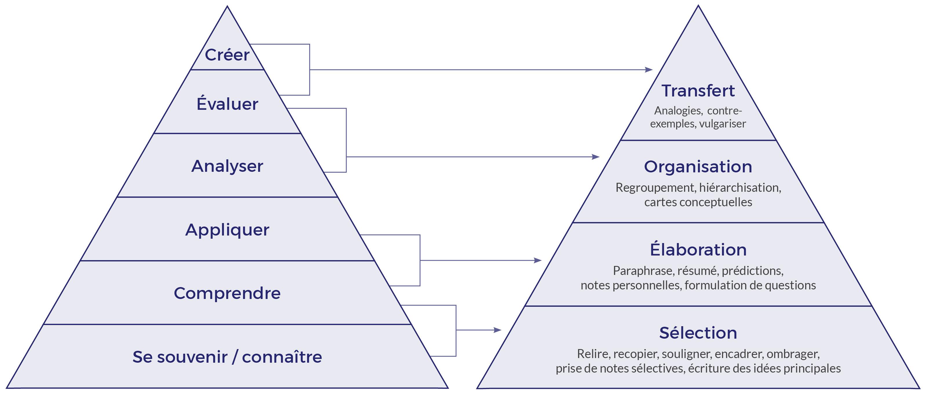 Équivalences entre la taxonomie de Bloom et la catégorisation des stratégies du traitement de l'information